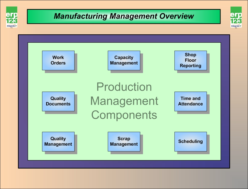 Overview Of The Elements Of Repetitive Manufacturing